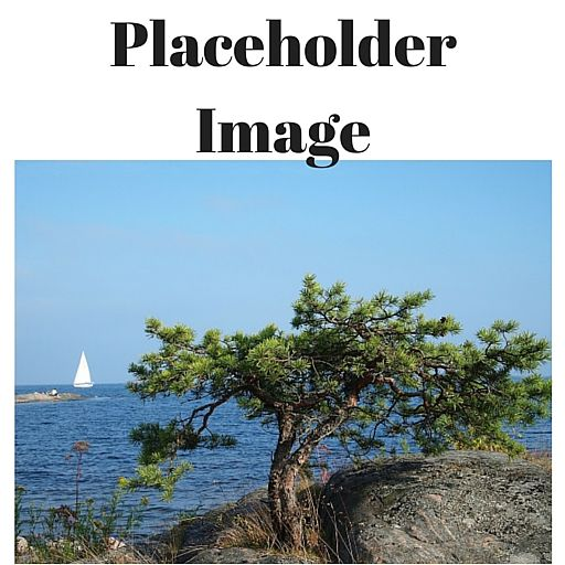 Photo of a distant sailboat on the water with a tree and rocky crag in the foreground
