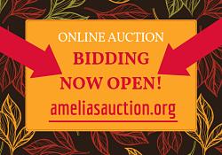 Online Auction Bidding Open