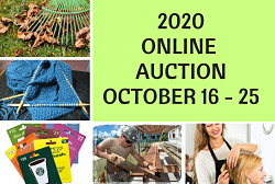 2020 Auction Donations Needed