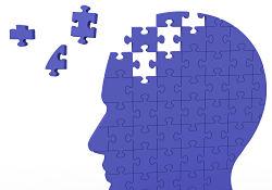 human head puzzle