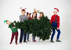 children carrying Christmas tree