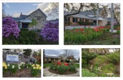 New Cumberland Library Gardens
