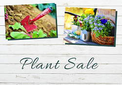 Gardening tools, plants, and gloves