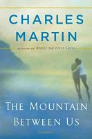 Book cover: The Mountain Between Us